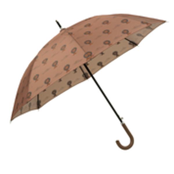 Bild von Parapluie Lion - FRESK